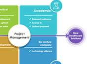 Virtual business structure and Project management